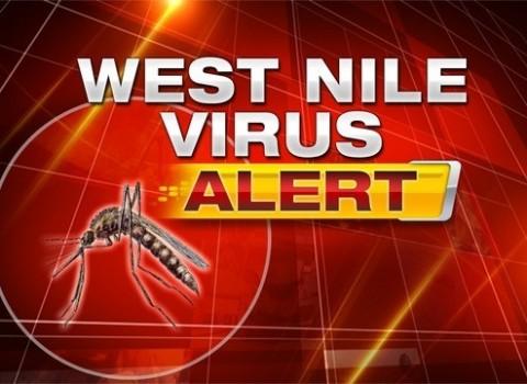 West-Nile-Virus-Alert