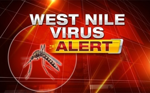 West-Nile-Virus-Alert